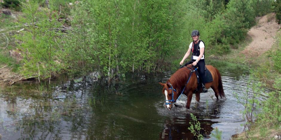 Träning i vatten