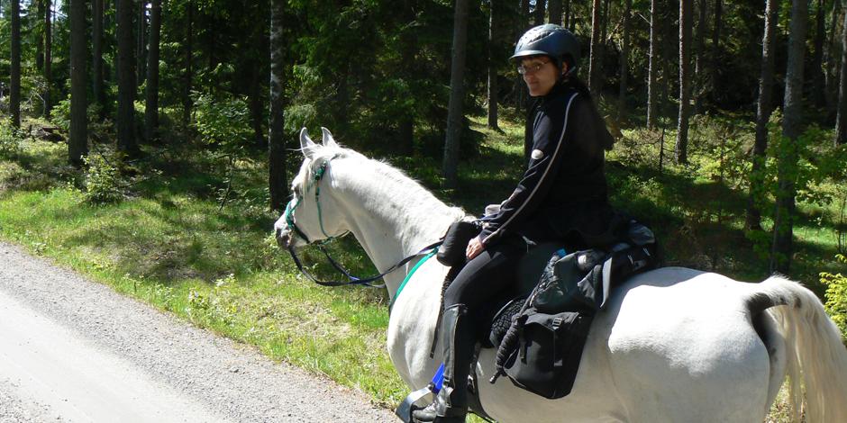 Långritt med häst