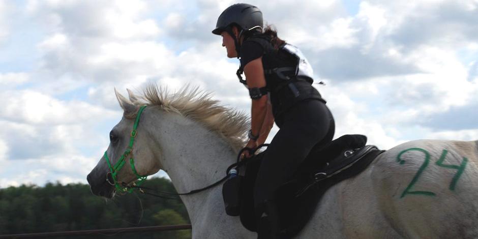 Konditionsträning häst